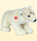 peluche-teddy Ours blanc